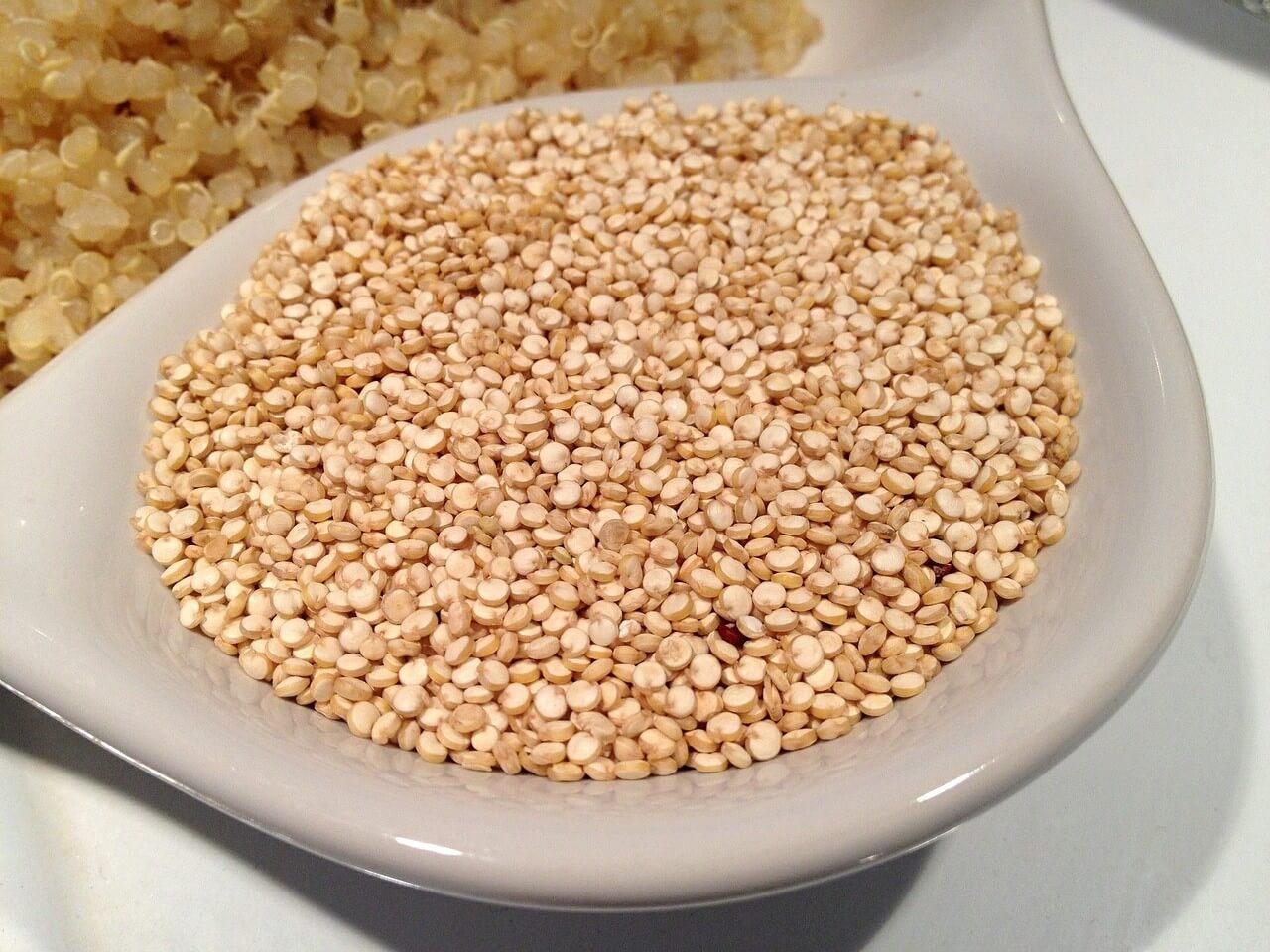 藜麥的營養價值、蛋白質知多少?帶你認識「超級食物」藜麥