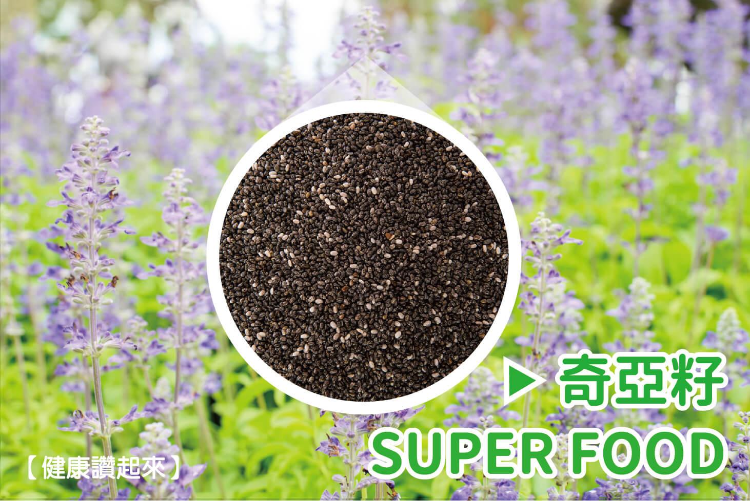 奇亞籽Chia Seeds~21世紀超級食物Super Food